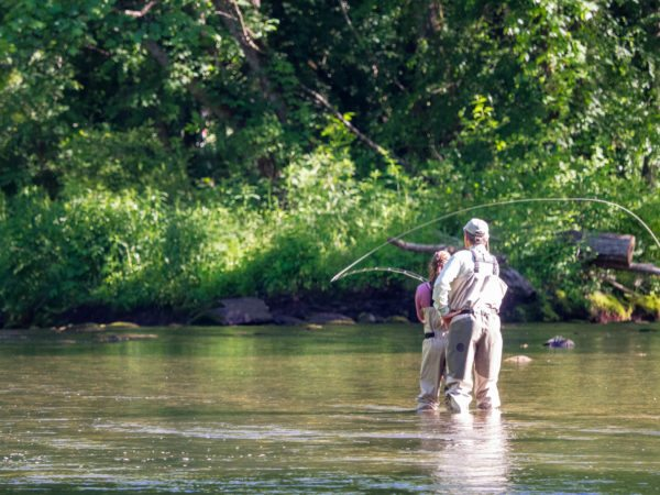 Working on your cast, fly fishing, bryson city