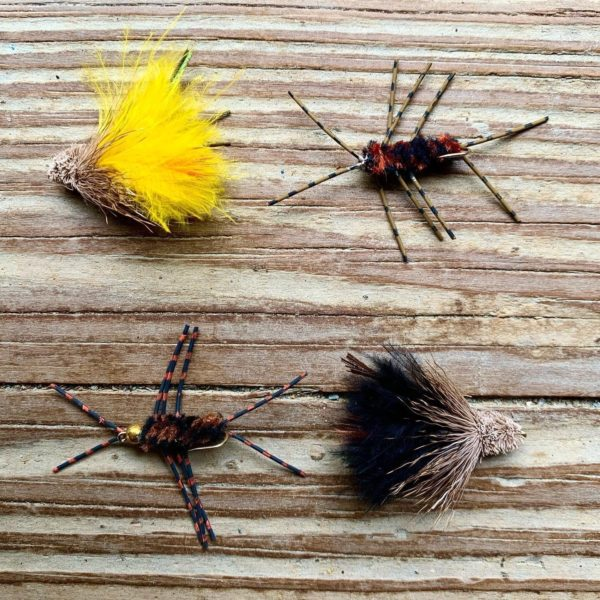 Best Flies for Trout Fishing